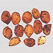 Monocillium gamsii sp. nov. and Monocillium ...